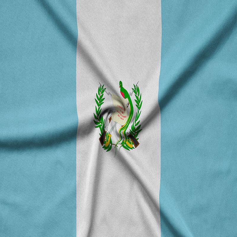 Incubadora Regional » GUATEMALA «
