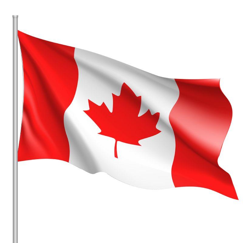 Egg farming in Canada, A way of life, still…
