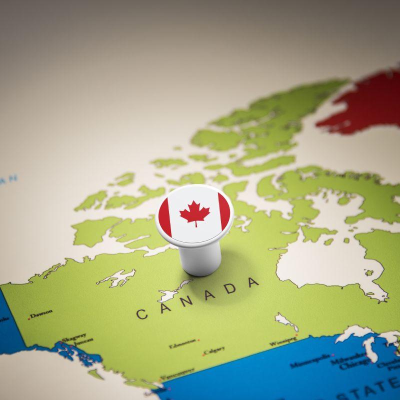 Investment into the future: New Lohmann pedigree farm in Canada