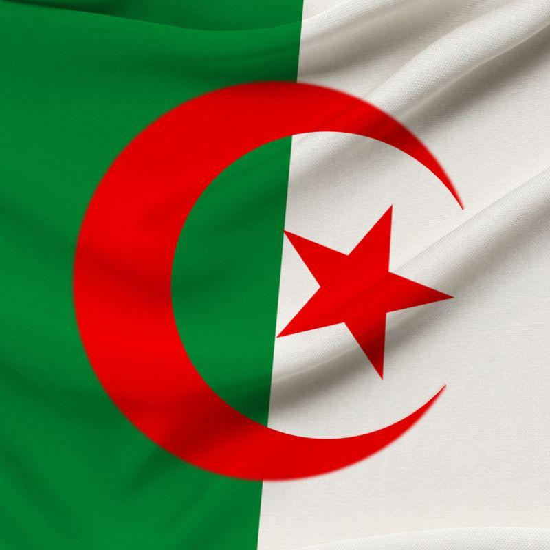LOHMANN TIERZUCHT market leader 11 in Algeria